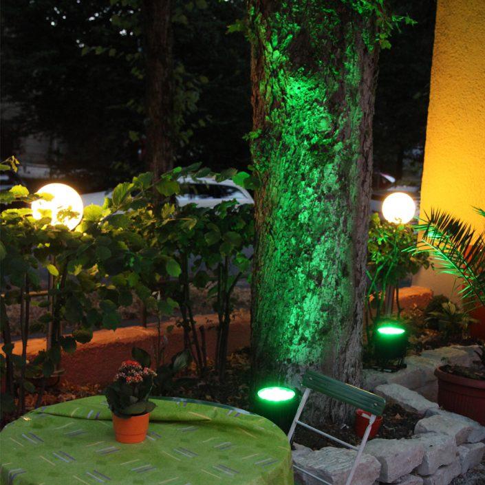 Restaurant Troja München - beleuchteter Baumstamm