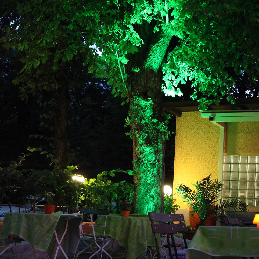 Restaurant Troja München - beleuchteter Baum