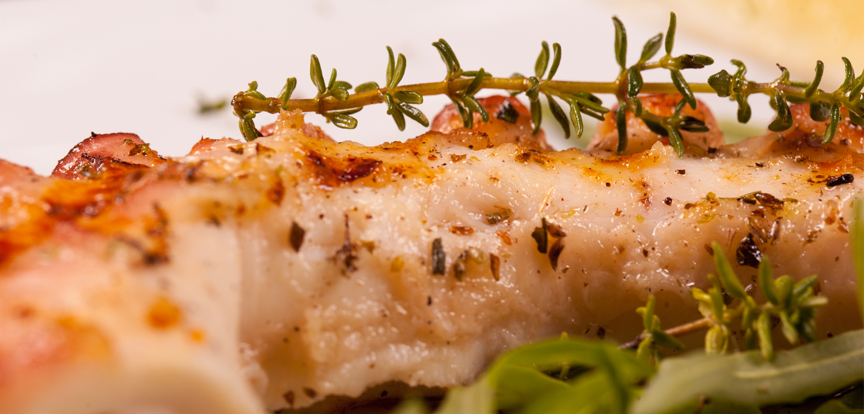 Restaurant Troja München - Oktopus vom Grill mit Kräutern